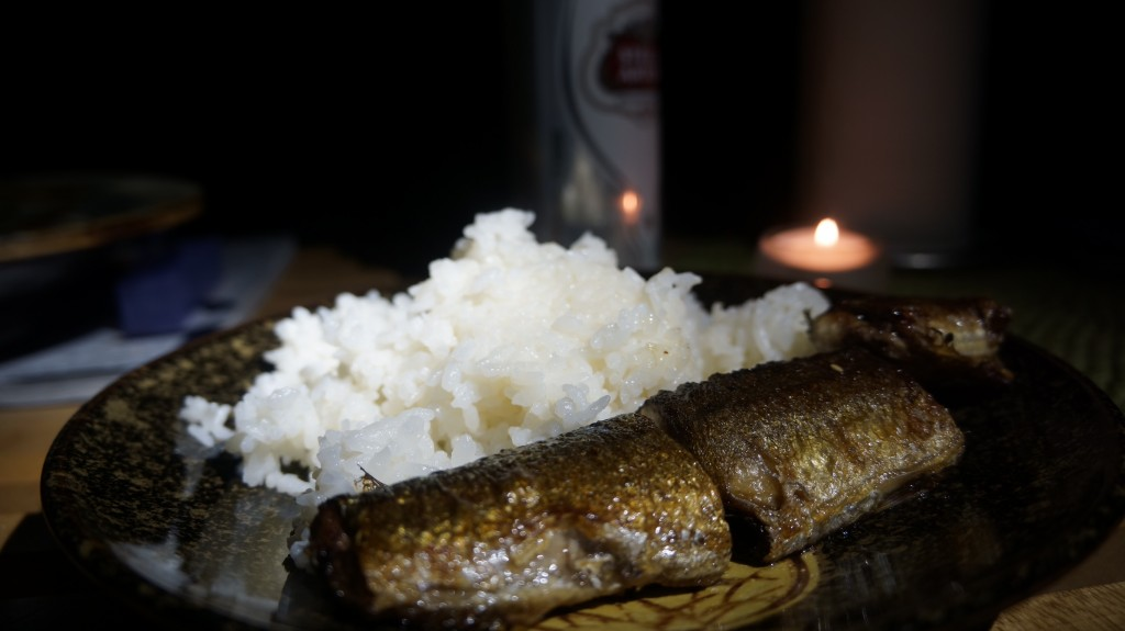 Hurricane Sandy, NYC, sanma, Iwatani, Japanese cuisine, hurricane, blackout