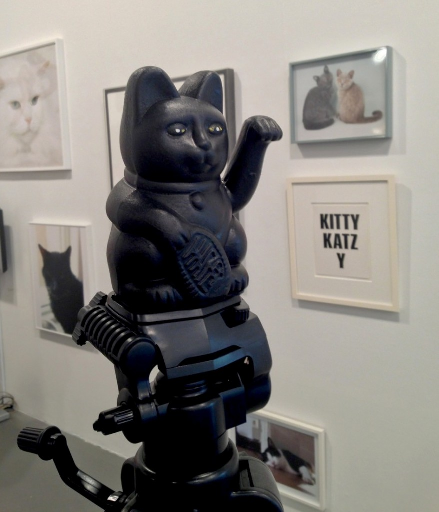 The Cat Show, White Columns, gallery, NYC, cats, cat art, Rhonda Lieberman, Gia Wolff, Freecell, Ann Cathrin November Høibo, maneki neko, neko, nyanko, nyan, kitty, kitten, Takeshi Murata, cat condos, Zen Litter Tray, Rob Pruitt, Nobuyoshi Araki, Chiro, Catwalking, Rainer Ganahl, Mikio Kamiyama, Maru, mugumogu