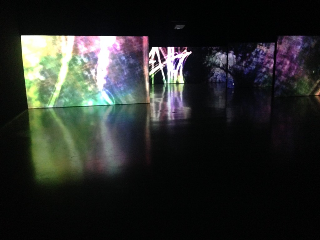 Ultra Subjective Space, teamLab, Pace Gallery, NYC, Japan Society, art, digital art, painting, rebirth, Japan, Japanese artists