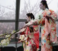 Highlights from BBG's 35th Sakura Matsuri events on it's Main Stage as well as vendors exhibiting at it's Japanese Market.